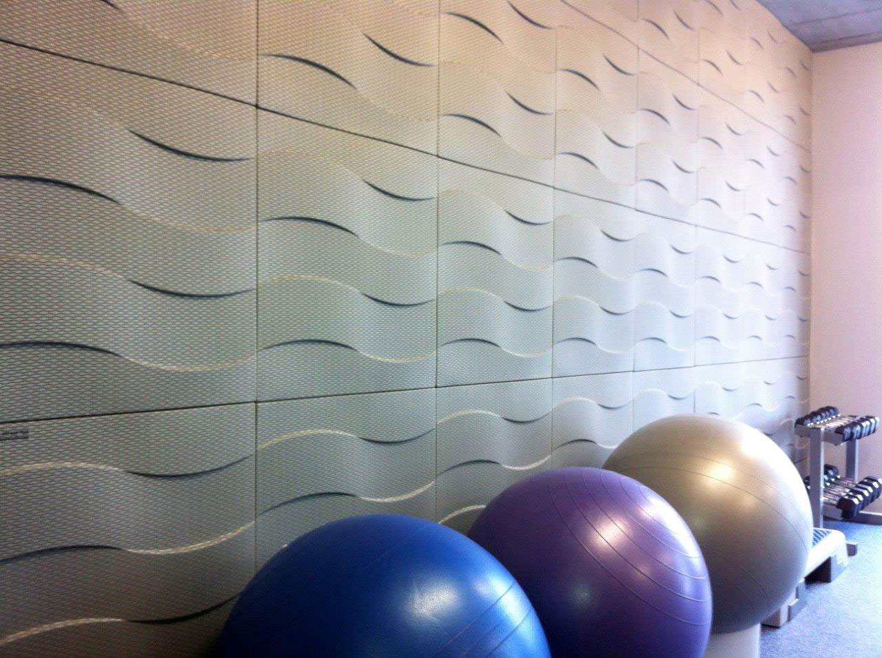 Acoustic Panel Weight Room